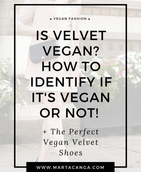 Is Velvet Vegan? How To Identify If It's Vegan Or Not!